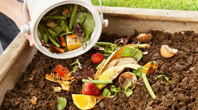 Stick 'em on the compost!