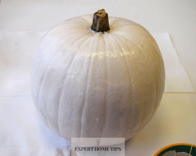 cream painted pumpkin