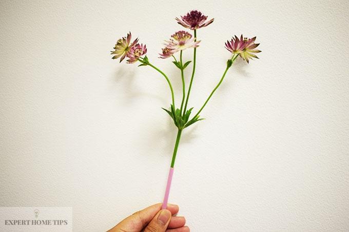 Straw around the bottom of a flower