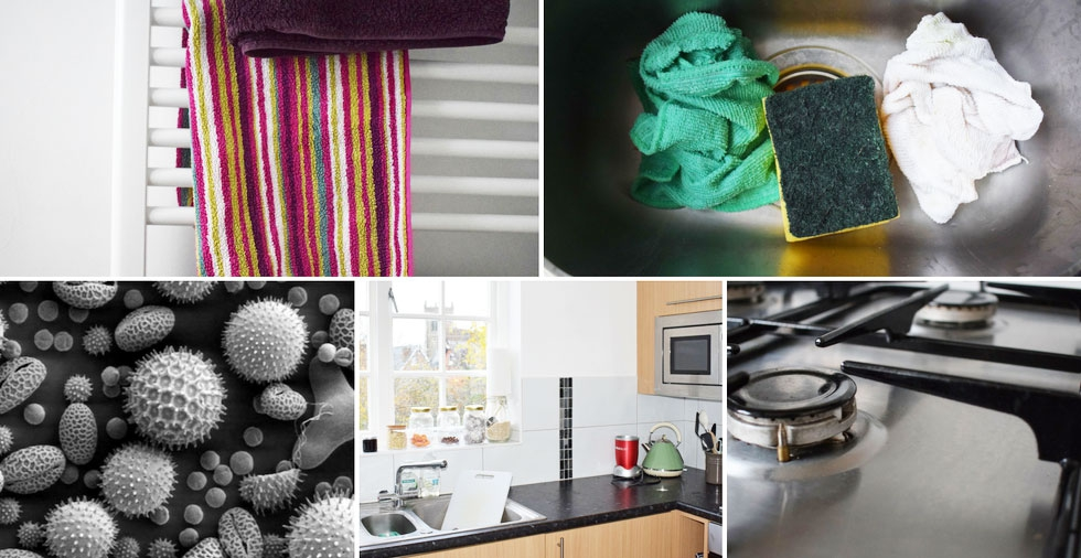 Yuck - The germiest place in the home EXPOSED!