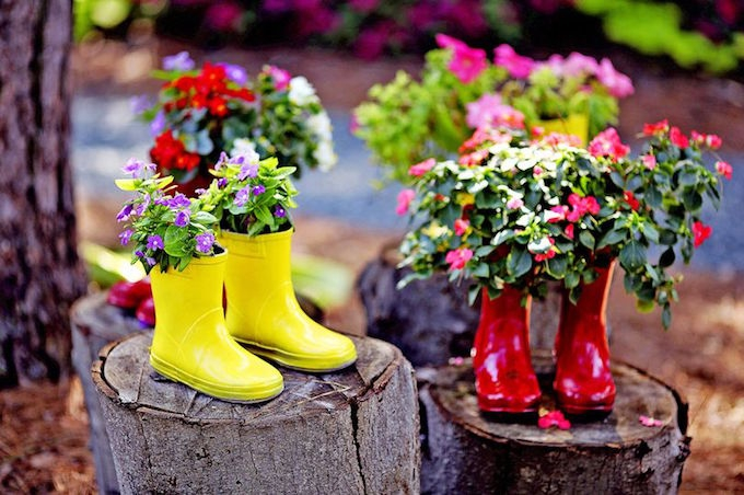 wellington boot plant pots