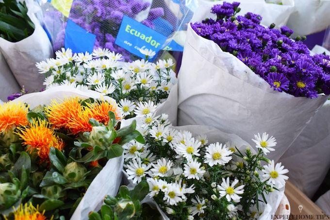 flowers composting