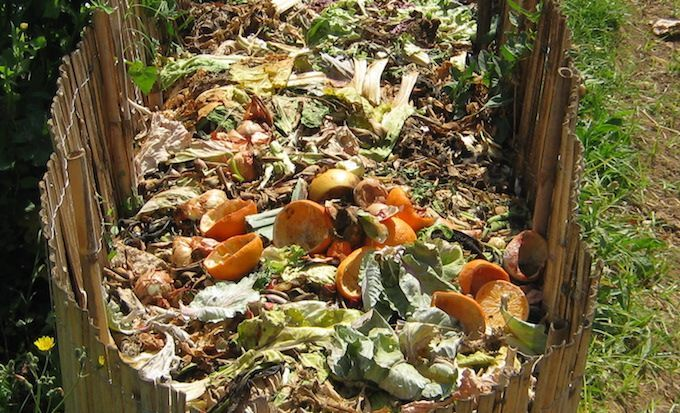 compost heap environmental benefits