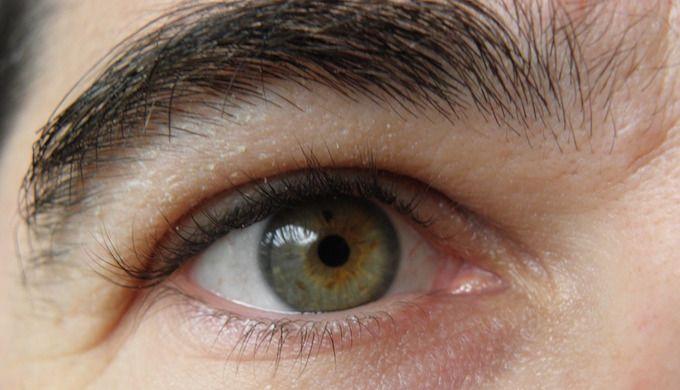 eyebrows thick bushy natural