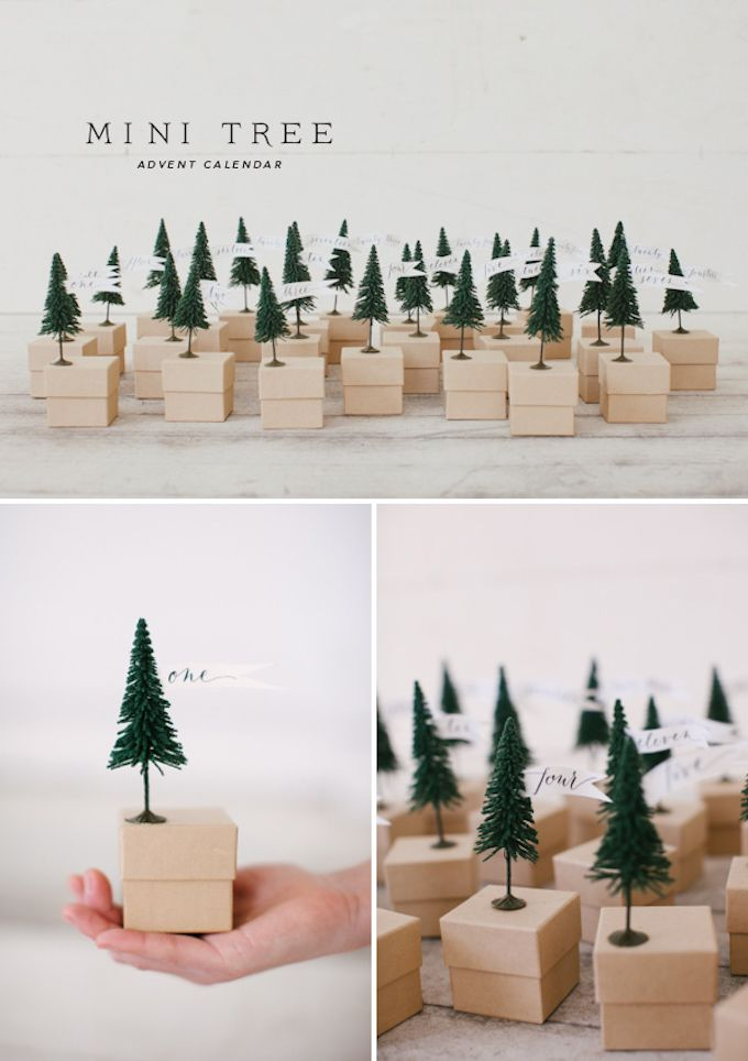 forest of trees advent